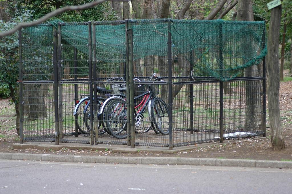 拉致された自転車たち