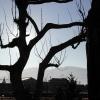 駒ヶ根の風景