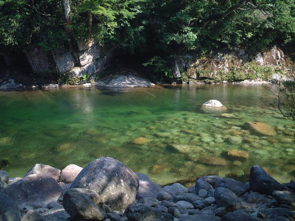 屋久島の川