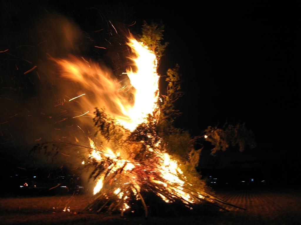 どんど焼き 2006