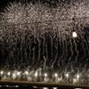 巨大な線香花火