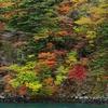 P2803十和田湖紅葉