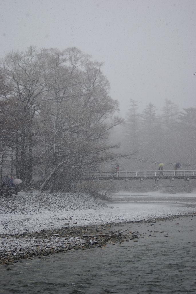 P2188雪の河童橋