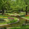 P0342昭和記念公園の渓流広場