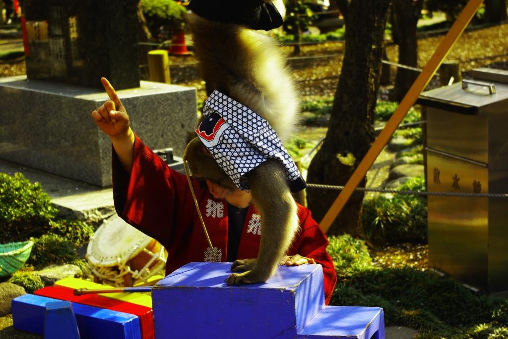 湯島天神、猿回し