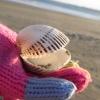 かわいい手袋と貝