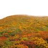 栗駒山 紅葉 2012 ①