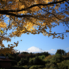 富士山のある風景