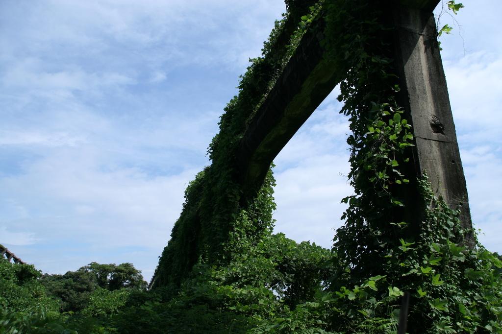 コンクリートと緑