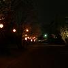 桜祭りの夜