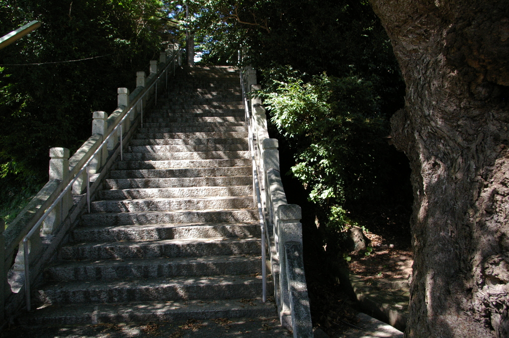 IMGP3043神代八幡宮
