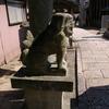 IMGP3037神代八幡宮