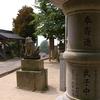 IMGP2586松戸八幡宮