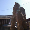 IMGP3030神代八幡宮