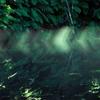 光と水の芸術