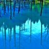 青い池 Special