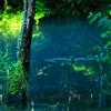 神の池に立つ
