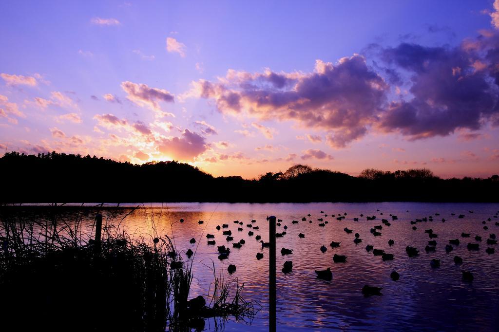 上沼の夕焼け
