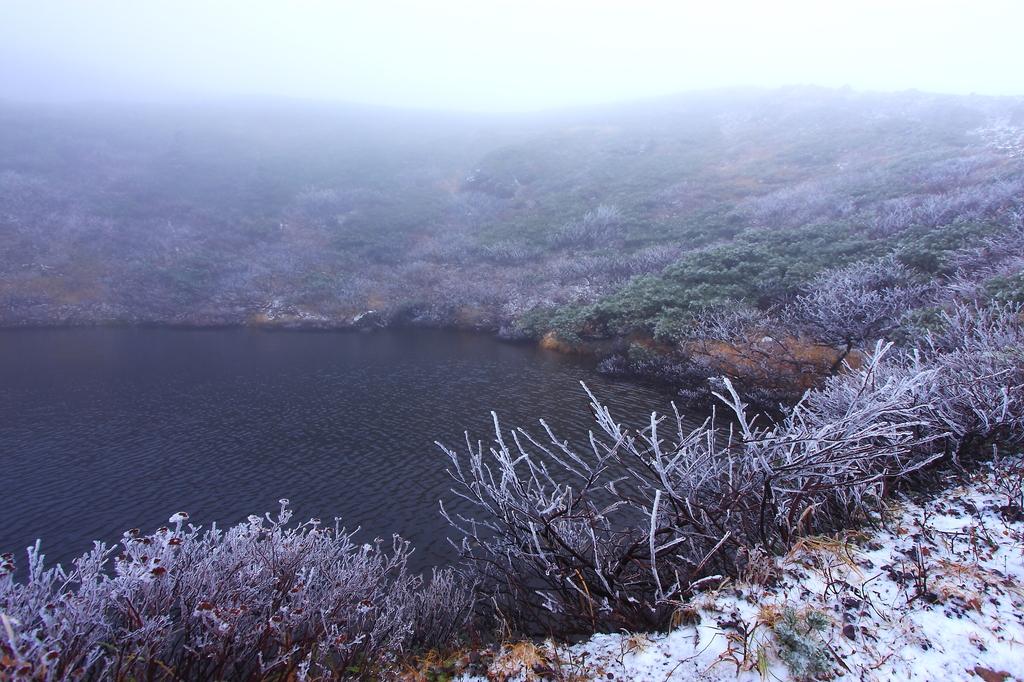 初雪舞う秋