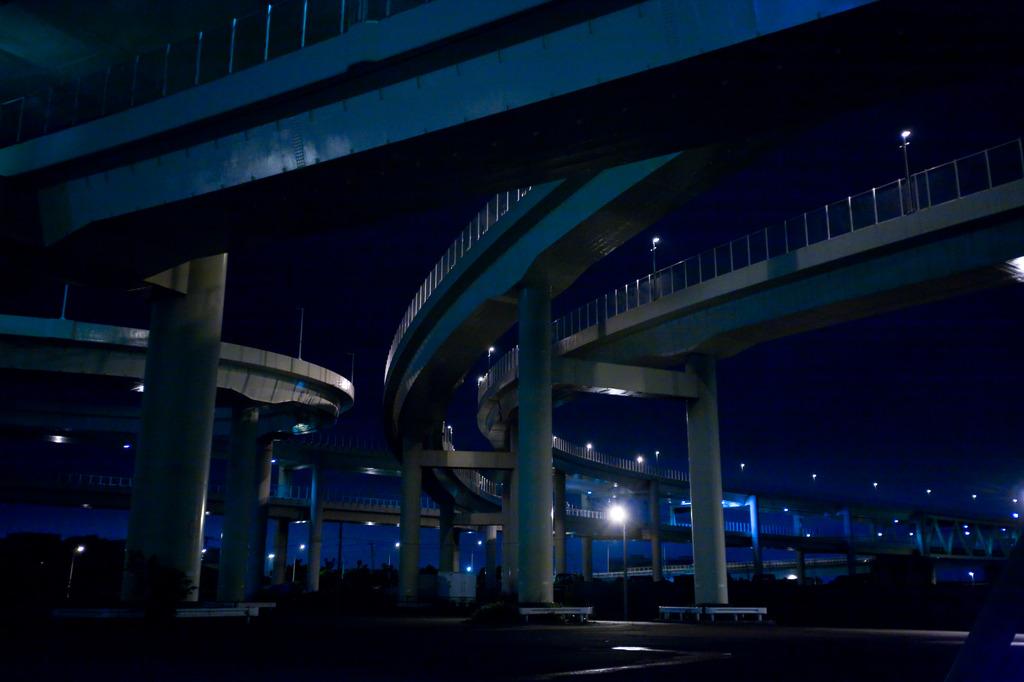 夜の曲線美