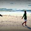 渚にて・・・・。