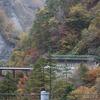 白山スーパー林道 3