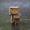 ダンボー親子と雨の中。