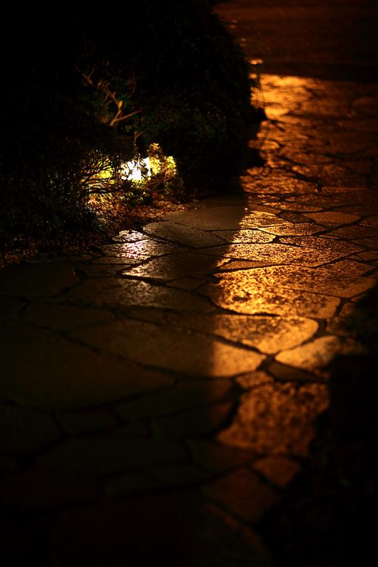夕焼けライト