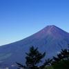 三つ峠からの富士山