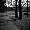 朝の公園Ⅰ