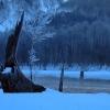 真冬の大正池