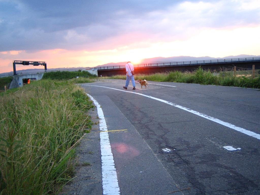 夕焼け^と^散歩