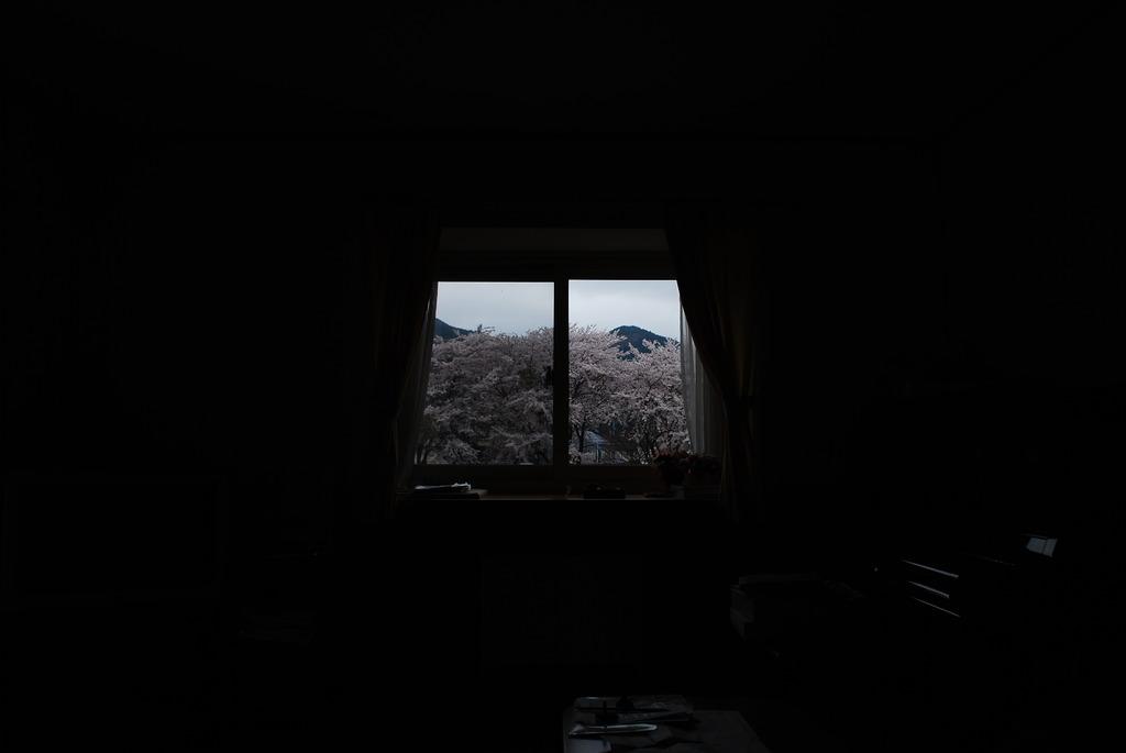 我が家の窓から2009 春