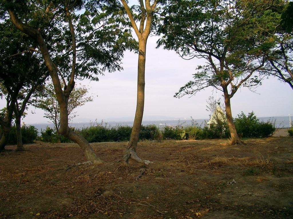 丘の上のガーデンカフェ前