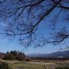 青空の下の田園