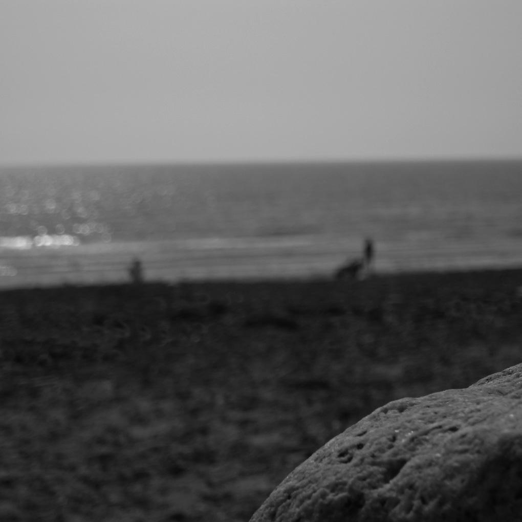 春に霞む海に
