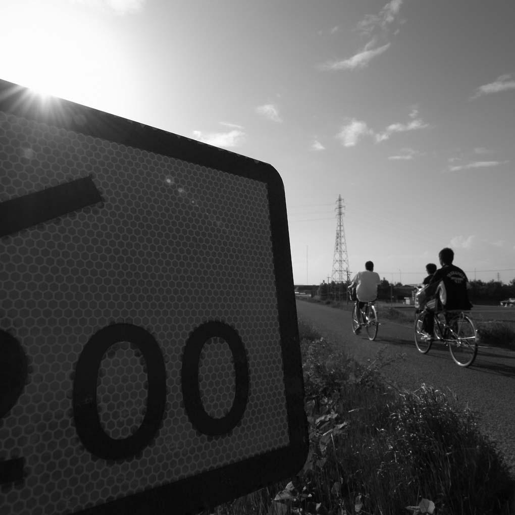 河川敷(自転車が走る)