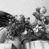 棚の上の花