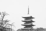 東寺 雪の五重塔
