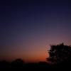サバンナの夜明け前 〜アフリカの大地ぃ?〜
