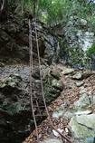 長尾滝への道