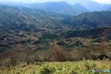 深山幽谷Ⅱ