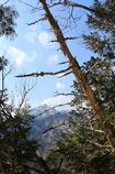 鎌ヶ岳を望む