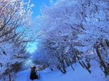 御在所岳冬の風物詩