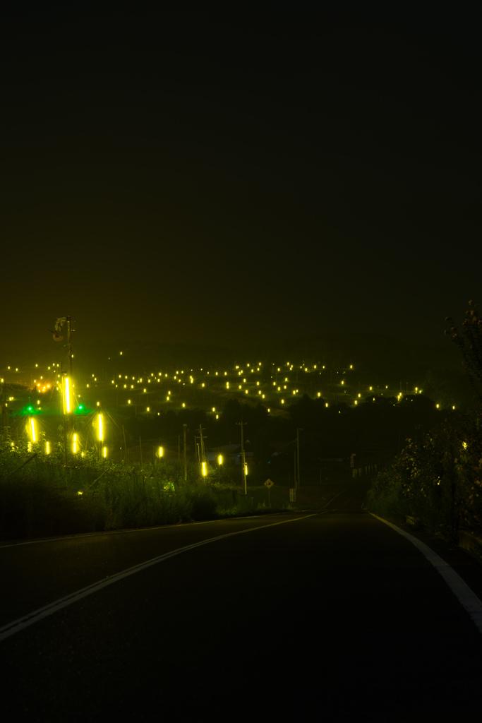 防蛾灯に誘われて 広島県世羅町にて。 蛾はよってきませんが、私みたいな物好きが寄ってきま...