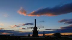 印旛沼・風車 - 花開く季節を待つ -