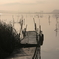 印旛沼・朝景 - 朝靄の桟橋 -
