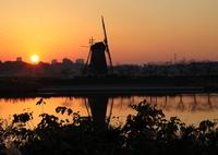 CANON Canon EOS 5D Mark IVで撮影した(印旛沼・風車 - 沈み行く夕陽とともに -)の写真(画像)