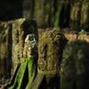 九品寺の石仏