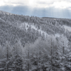 霧氷と天使の梯子